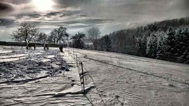 Artworks rund um den Winter und sein 'weißes Gesicht' (2013, 2014) - Serie 'Winterlandschaften' (von Benjamin Erhardt)