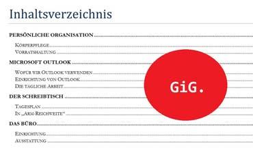 Die Organisation eines effizienten und effektiven Alltags - GiG. Der Alltag (von Benjamin Erhardt)