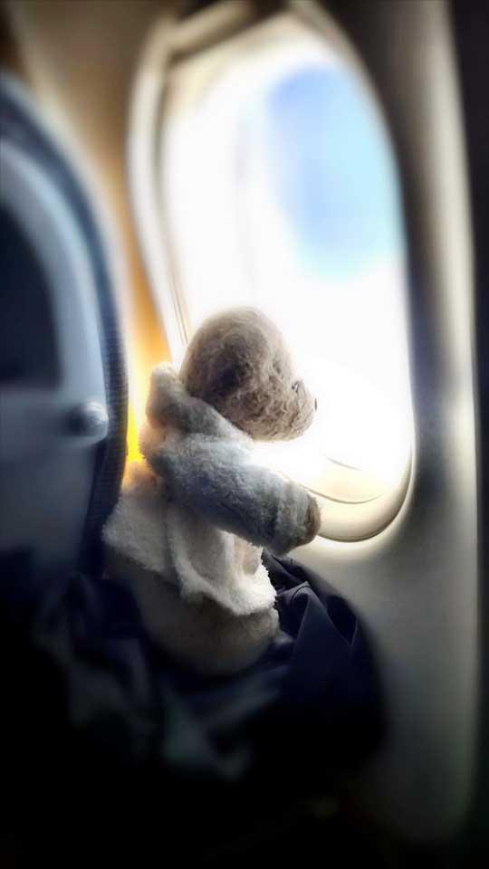 Fosters Fernweh. Im Flugzeug nach Japan