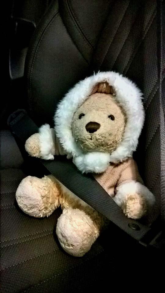 Foster Autofahrt im Winter. Gut eingepackt